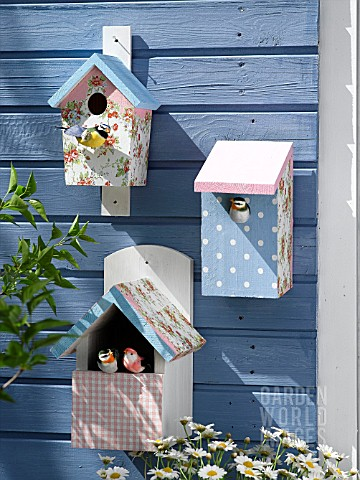 DECORATED_BIRD_BOXES