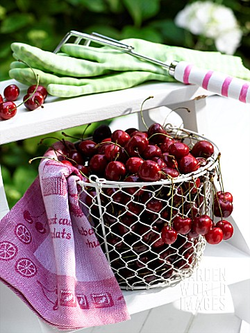 CHERRIES_IN_A_BASKET