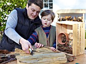 INSECT HOUSE BUILDING PROJECT WITH FATHER AND SON.  CUTTING BAMBOO INTO SMALL BUNDLES.  STEP 28