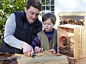 INSECT HOUSE BUILDING PROJECT WITH FATHER AND SON.  CUTTING BAMBOO INTO SMALL BUNDLES.  STEP 27
