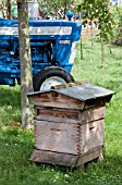 TRADITIONAL BEE HIVE (BBKA) AT THE EDIBLE GARDEN, RHS HAMPTON COURT,  DESIGNERS JON WHEATLEY AND ANITA FOY