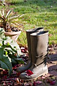 WELLINGTON BOOTS ON AUTUMNAL PATIO