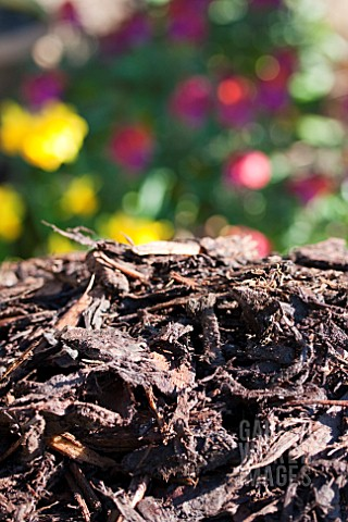 BARK_MULCH_RAISED_VEGETABLE_BED_PROJECT