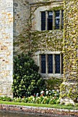 MIXED PLANTING IN SPRING OUTSIDE WALL OF HEVER CASTLE.