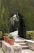 CONIFER ARCHWAY ALHAMBRA GENERAL LIFE,  GRANADA SPAIN.