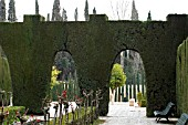 CONIFER HEDGE WITH ARCHES AT THE ALHAMBRA PALACE,  GRANADA SPAIN.