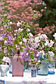 CUT BRANCHES WITH BLOSSOMS OF MALUS AND SYRINGA VULGARIS IN PINK AND BLUE GLASS VASES