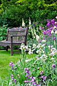 COTTAGE GARDEN IN SUMMER WITH WOODEN BENCH