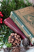 ILEX AND PSEUDOTSUGA MENZIESII, DOUGLAS-FIR DECOR WITH VINTAGE CHRISTMAS BOOKS