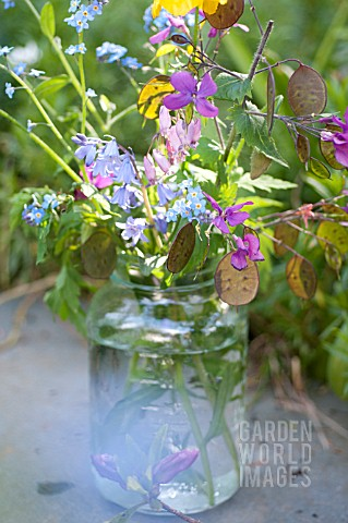MIXED_WILD_FLOWERS_IN_JAR