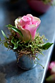 ROSE IN ZINC CONTAINER