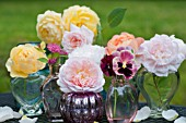 ROSA EGLANTYNE, ROSA A SHROPSHIRE LAD, ROSA GRAHAM THOMAS, ROSA LADY EMMA HAMILTON, DAVID AUSTIN ENGLISH ROSES IN A COLLECTION OF CLASS VASES IN OUTDOOR DISPLAY