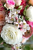 MALUS X EVERESTE  SPRING BOUQUET OF PINK ROSES  RANUNCULUS AND APPLE BLOSSOM DETAIL
