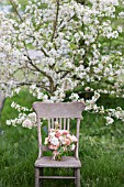MALUS X EVERESTE  ROSA  RANUNCULUS ASIATICUS IN BOUQUET ON VINTAGE CHAIR