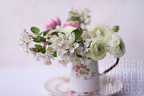 MALUS_X_EVERESTE__ROSA__RANUNCULUS_ASIATICUS_IN_BOUQUET__IN_A_VINTAGE_PITCHER