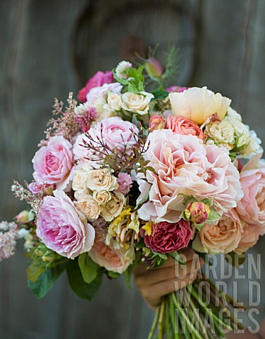 ROSA_ABRAHAM_DARBY_WITH_RANUNCULUS_GARDEN_ROSES_SPRAY_ROSES_AND_FOLIAGE