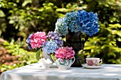 HYDRANGEA MACROPHYLLA NIKKO BLUE AND ENDLESS SUMMER IN URN WITH PINK PARFAIT, AND GLOWING EMBERS