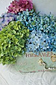 HYDRANGEA MACROPHYLLA NIKKO BLUE, ENDLESS SUMMER AND GLOWING EMBERS IN DECORATIVE CASE ON BED WITH ANTIQUE LINENS.