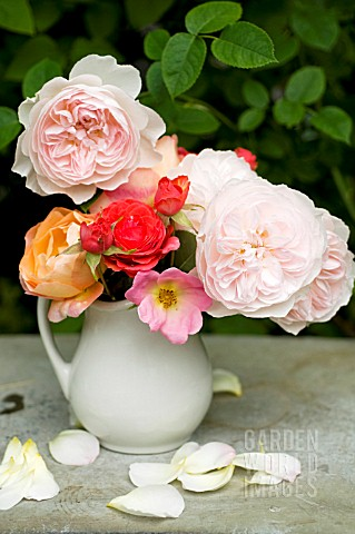 MIXED_CUT_ROSES_IN_VASE