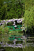 BRIDGE AND WISTERIA REFLECTED IN POND AT MONETS GARDEN GIVERNY FRANCE