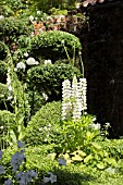 THE TOPIARIST GARDEN AT WEST GREEN HOUSE - DESIGNER MARYLYN ABBOTT - RHS CHELSEA