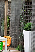 THE DRAWING ROOM GARDEN  URBAN LONDON GARDEN  CHAIN SCREENS WITH BUXUS IN TALL CONTAINER  DESIGNED BY: EARTH DESIGNS.