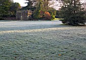 WINTER GARDEN WITH FROST IN THE MORNING LIGHT