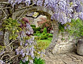 ROUND ARCH IN STONE WALL AT BIDDESTONE MANOR, WITH WISTERIA AND BOX TOPIARY