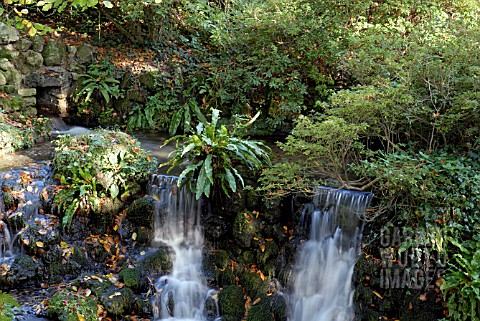 WATERFALL_AT_MINTERNE_IN_DORSET