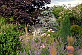 SUMMER GARDEN WITH SHED AND MIXED HERBACEOUS BORDERS