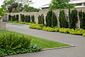 CONTEMPORARY GARDEN STONE WALL AND DRIVE WITH TAXUS BACCATA,  ALCHEMILLA MOLLIS, HEDERA AND FERNS