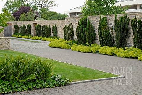 CONTEMPORARY_GARDEN_STONE_WALL_AND_DRIVE_WITH_TAXUS_BACCATA__ALCHEMILLA_MOLLIS_HEDERA_AND_FERNS