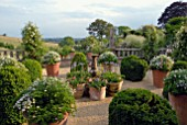 TERRACE WITH LARGE TERRACOTTA POTS, BOX TOPIARY AND ROSES AT HANHAM COURT