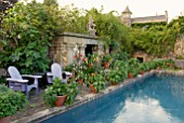 LATE SUMMER DISPLAY OF POTTED PLANTS BY SWIMMING POOL AT HANHAM COURT