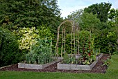 RUSTIC VEGETABLE GARDEN