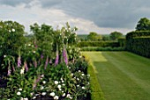 BOX- EDGED BORDERS WITH ROSES AND FOXGLOVES AT OZLEWORTH PARK, GLOUCESTERSHIRE