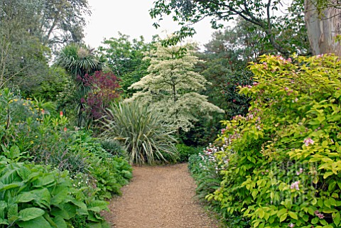 ABBOTSBURY_SUBTROPICAL_GARDEN_IN_DORSET