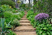 STONE STEPS AT ABBOTSBURY SUB-TROPICAL GARDEN IN DORSET