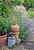 WATERING CAN AND TERRACOTTA POTS IN FRONT OF BORDER