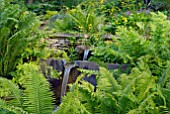 FERNS IN THE RILL GARDEN AT OZLEWORTH PARK, GLOUCESTERSHIRE