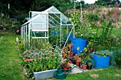 GREENHOUSE IN HILLSIDE GARDEN