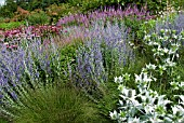 COMBINATION PRAIRIE STYLE PLANTING