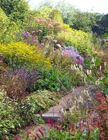 HERBACEOUS_BORDER_LATE_SUMMER