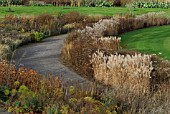 WINTER BORDERS AT RHS WISLEY