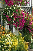HANGING BASKETS AND WINDOW BOXES AT THE CROSS KEYS IN USK,  WALES