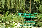 JAPANESE BRIDGE IN MONETS GARDEN,  GIVERNY,  FRANCE,  AUGUST