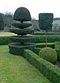 TOPIARY AT FELLEY PRIORY GARDEN,  NOTTINGHAMSHIRE