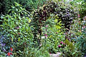 COTTAGE GARDEN VIEW THROUGH ARCH,  SEPTEMBER