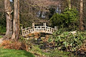 VIEW OF JAPANESE BRIDGE,  AT WINTERBOURNE BOTANICAL GARDEN