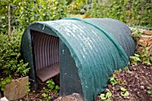 ANDERSON SHELTER ON ALLOTMENT